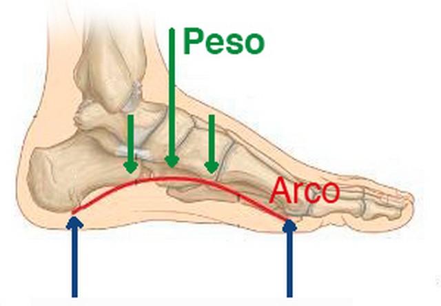 conocer forma del pie
